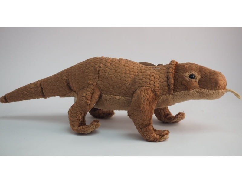 Buy This Komodo Dragon At Our Animals Online Shop
